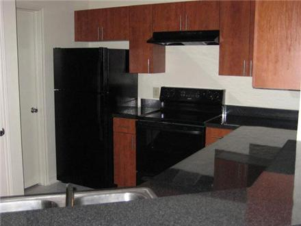 Large Kitchens