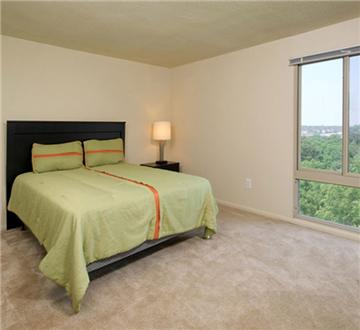 Large bedroom with wooded view